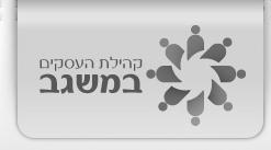 logo misgavBW